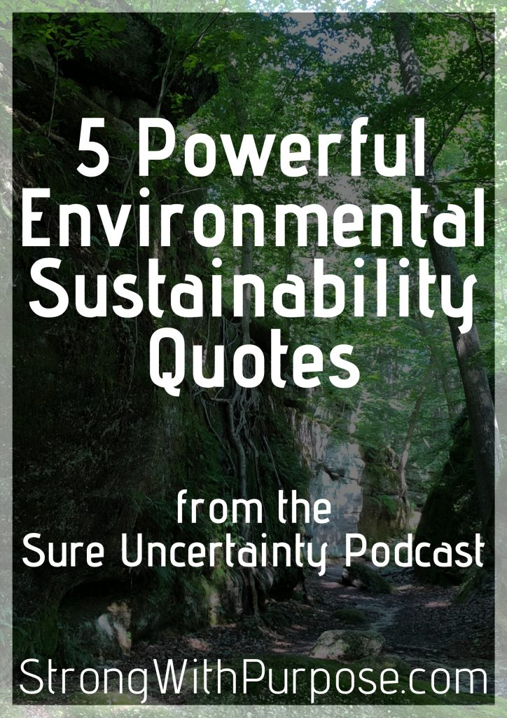 Powerful Environmental Sustainability Quotes Sure Uncertainty Podcast