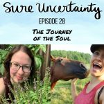 028: The Journey of the Soul