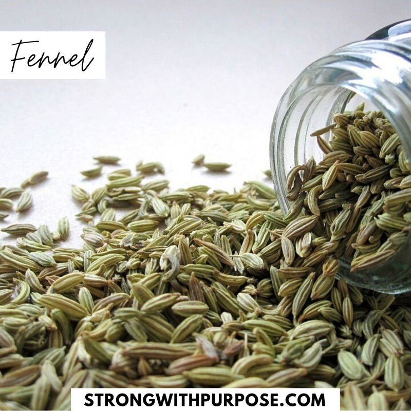 Fennel - 5 Natural Remedies to Improve Your Eye Health - Strong with Purpose