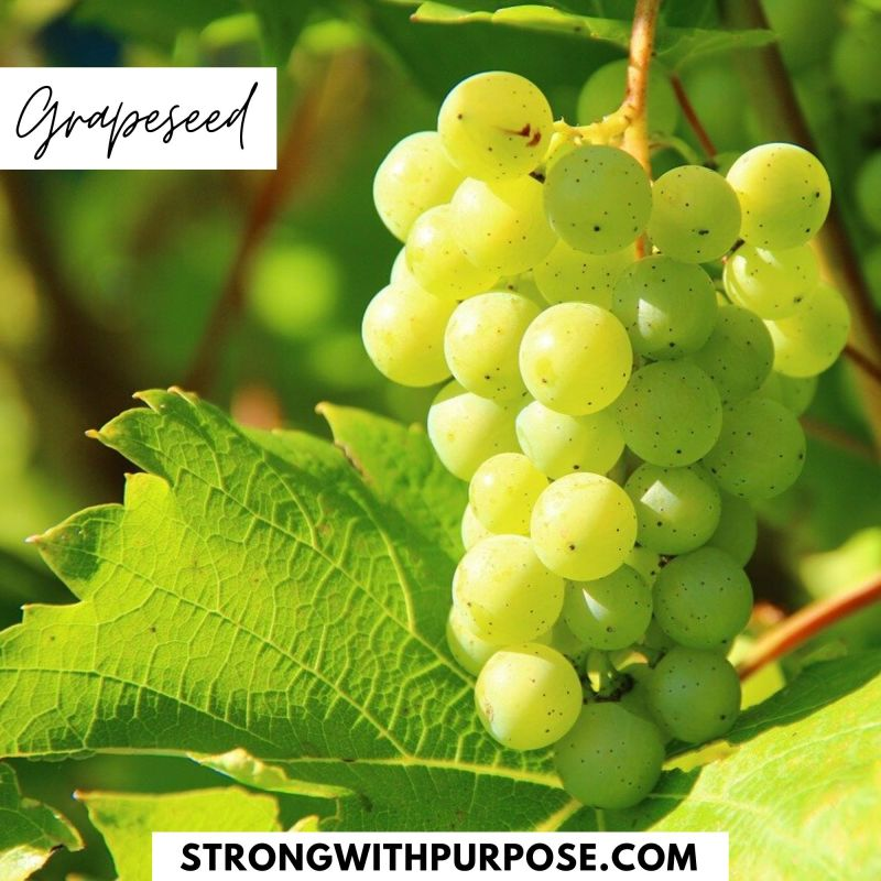 Grapeseed - 5 Natural Remedies to Improve Your Eye Health - Strong with Purpose