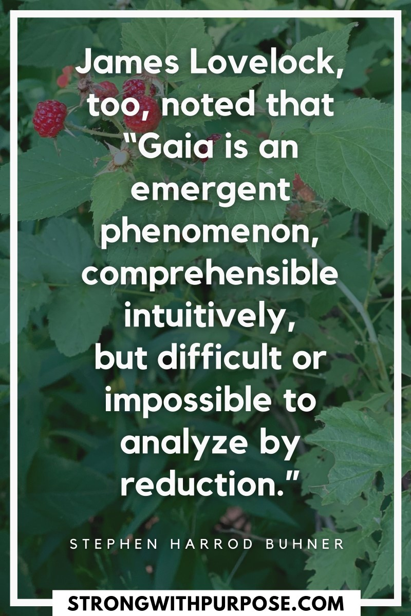 Gaia is an emergent phenomenon, comprehensible intuitively, but difficult or impossible to analyze by reduction - Strong with Purpose