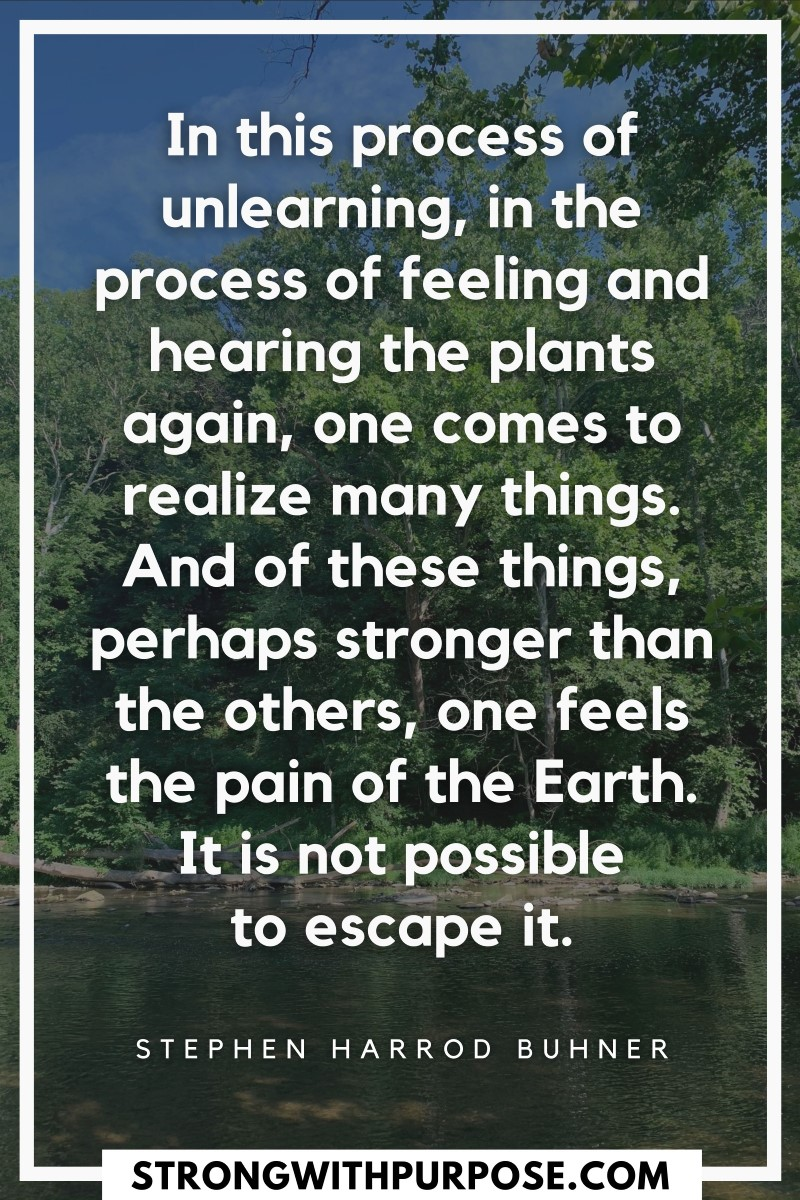 In this process of unlearning, in the process of feeling and hearing the plants again, one comes to realize many things - Strong with Purpose