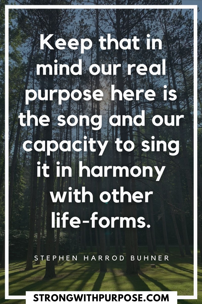 Keep that in mind our real purpose here is the song and our capacity to sing it in harmony with other life-forms - Strong with Purpose