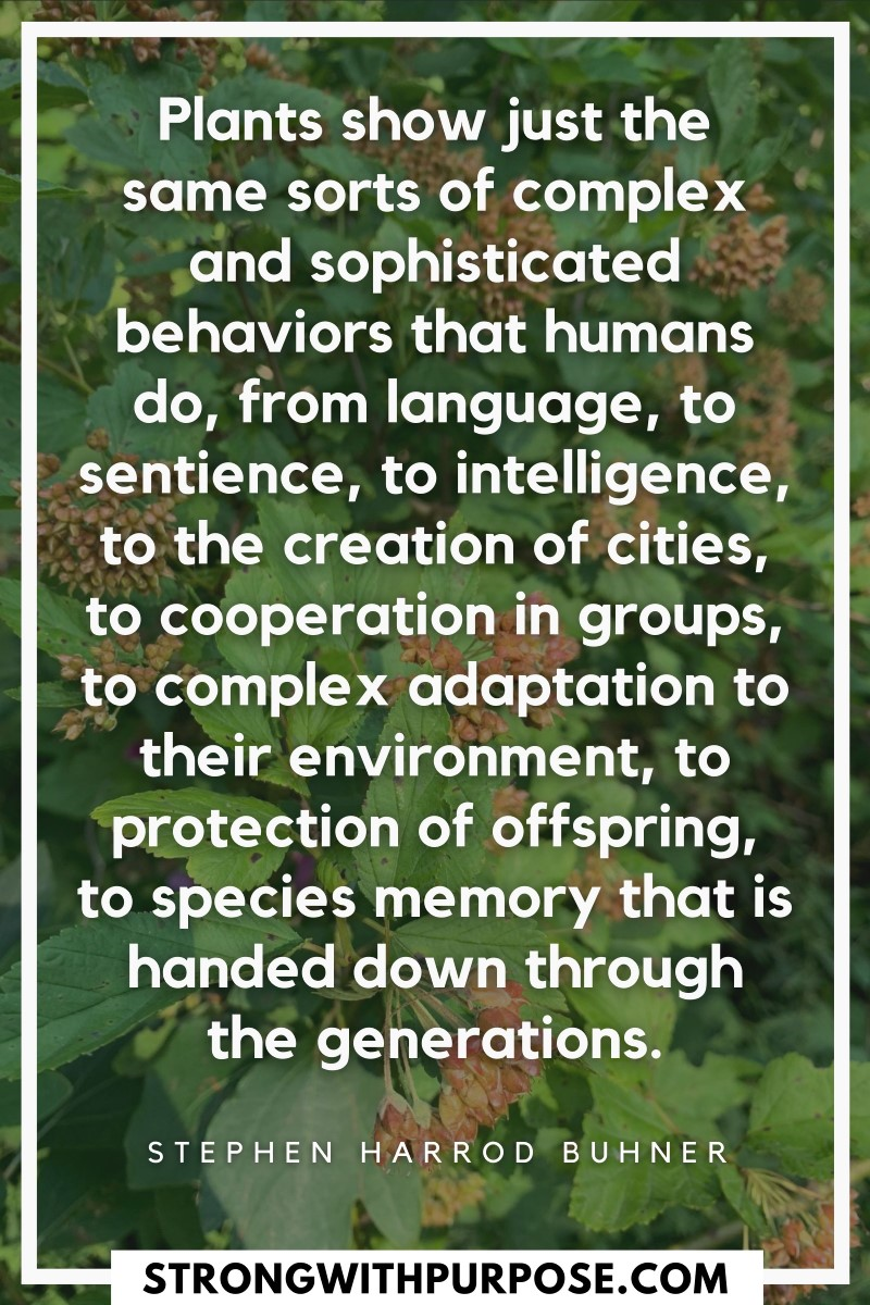 Plants show just the same sorts of complex and sophisticated behaviors that humans do, from language, to sentience, to intelligence - Strong with Purpose