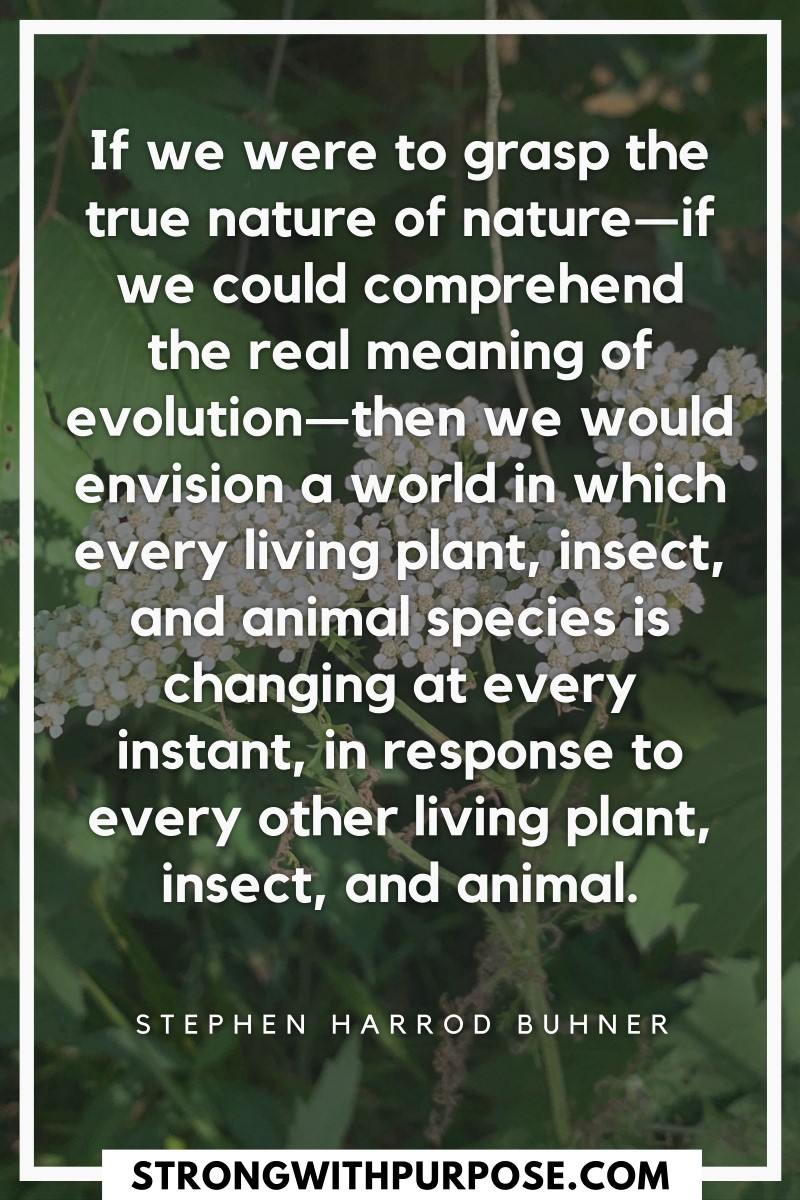 We would envision a world in which every living plant, insect, and animal species is changing at every instant, in response to every other living - Strong with Purpose