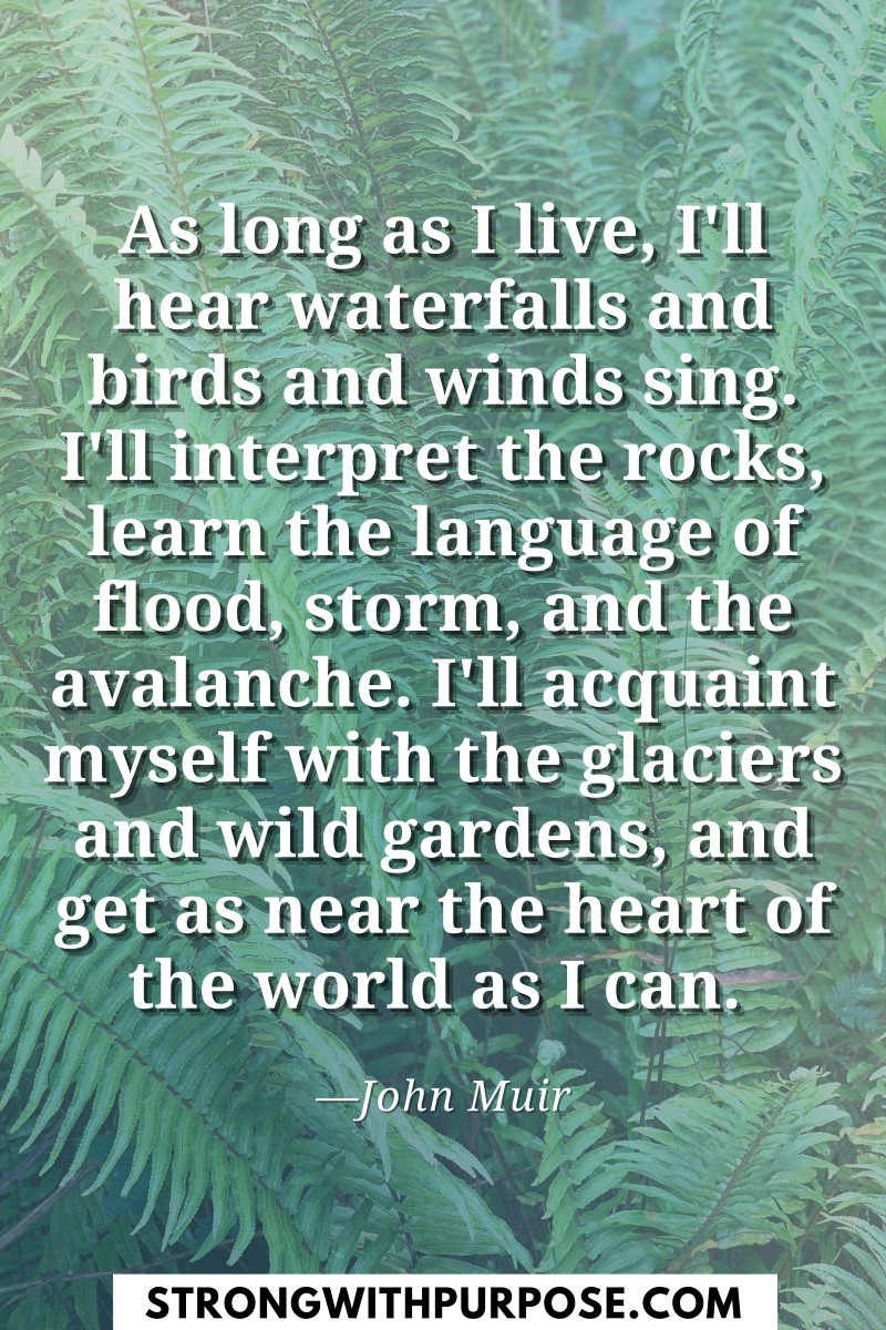 As long as I live, I'll hear waterfalls and birds and winds sing - Strong with Purpose