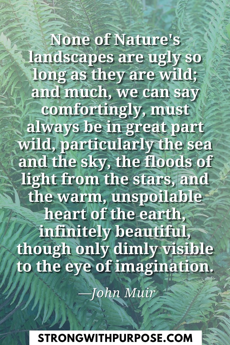 None of Nature's landscapes are ugly so long as they are wild - Strong with Purpose